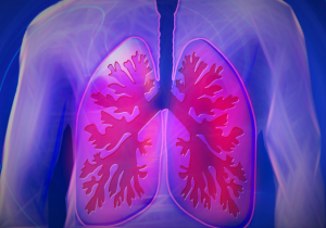 een-spirometrie-heeft-betrekking-op-de-longen